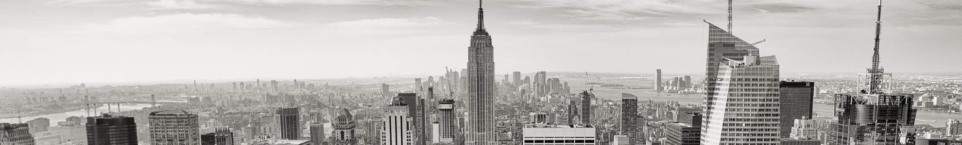 A panoramic view of the new york skyline and the empire state building