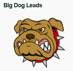 Big Dogs Accredited Investors